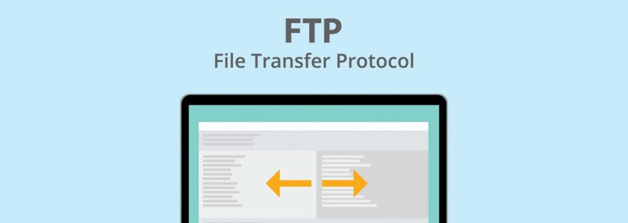 FTP / Web / WebDAV / SSH / RSync